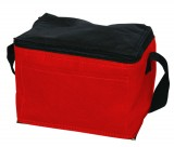 Non Woven Cooler / Lunch Bag